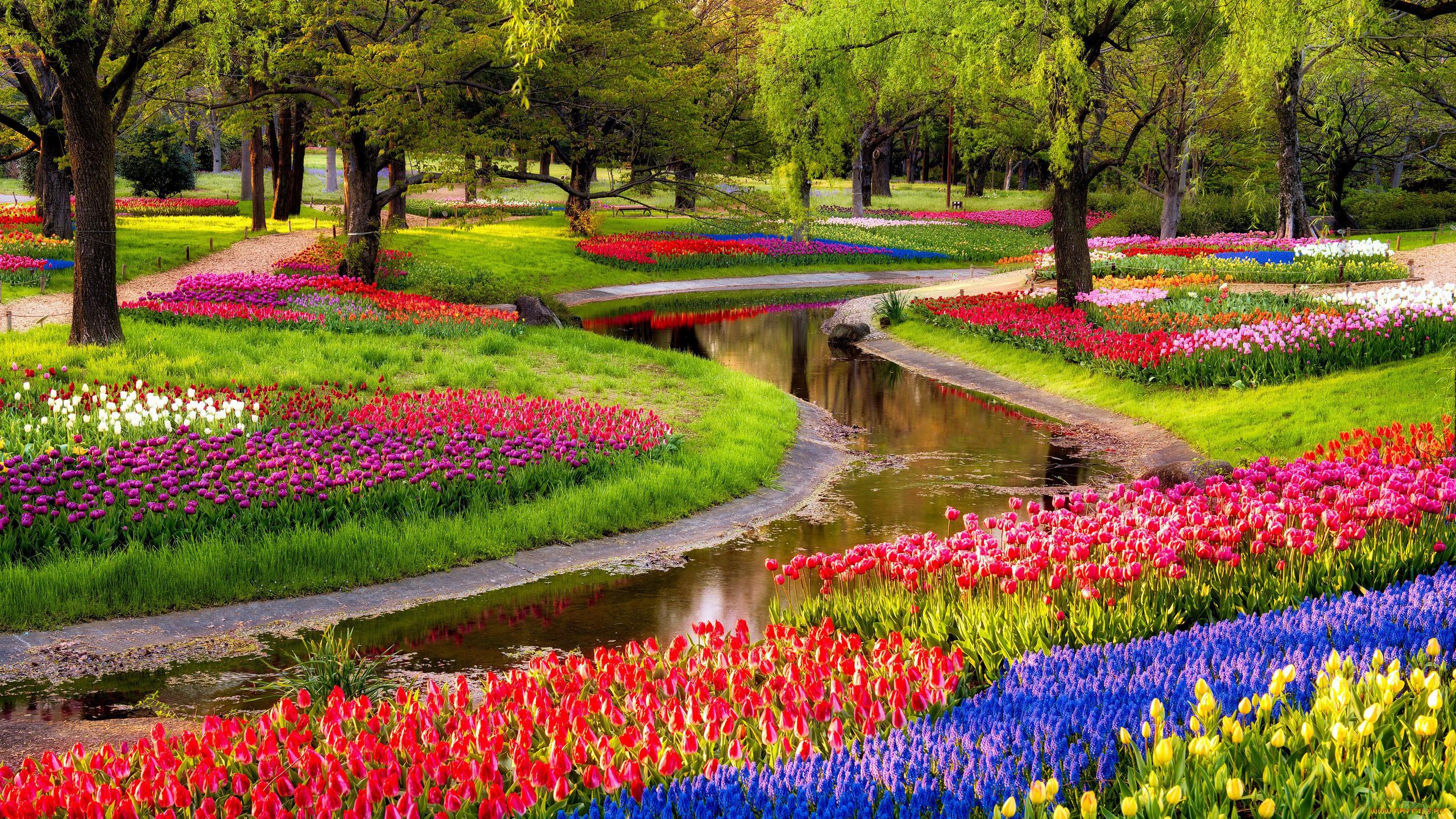 гораздо картинка красота весны окружающий мир человек когда-то
